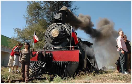 tren_vino-1